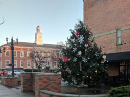 Christmas Tree in Downtown Delaware, Ohio