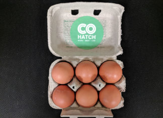 COhatch Egg Incubator Delaware, Ohio