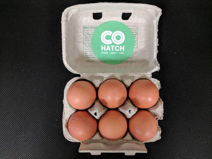 COhatch Egg Incubator Delaware, Ohio