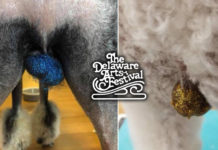 Man decorating dog testicles at Delaware Ohio Arts Festival