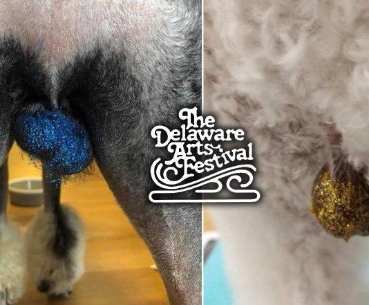 Man decorating dog testicles at Delaware Ohio Arts Festival