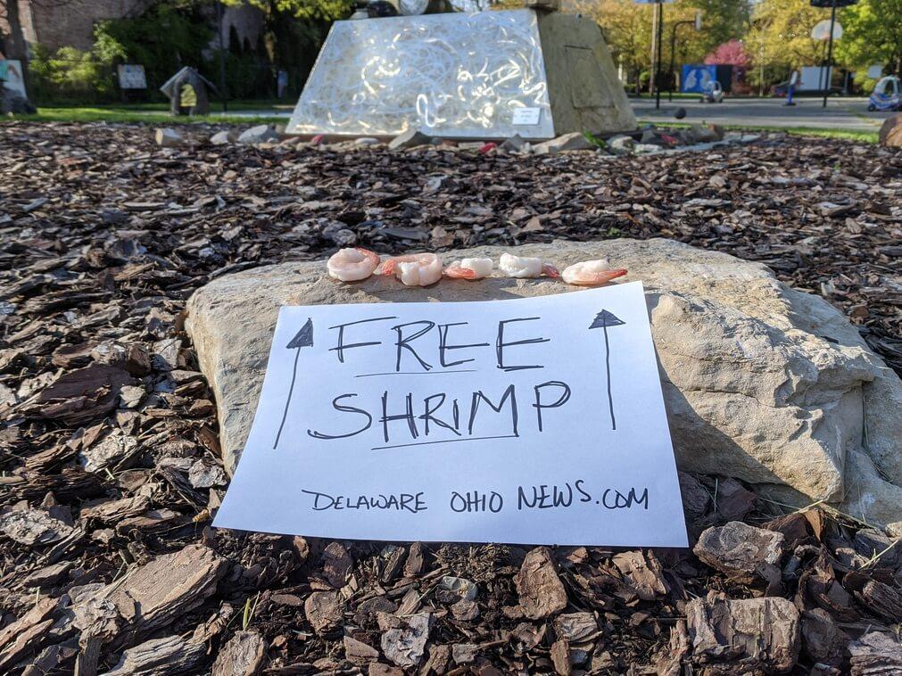 Free Shrimp at Boardman Arts Park in Delaware, Ohio